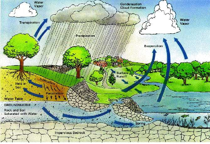 water conservation  articles